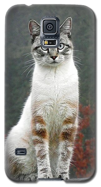 Zing The Cat Galaxy S5 Case