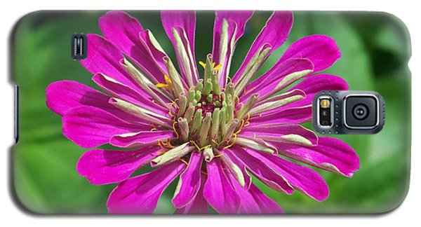 Galaxy S5 Case featuring the photograph Zinnia Opening by Eunice Miller