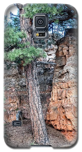 Galaxy S5 Case featuring the photograph Zion Nat. Park Lan464 by G L Sarti