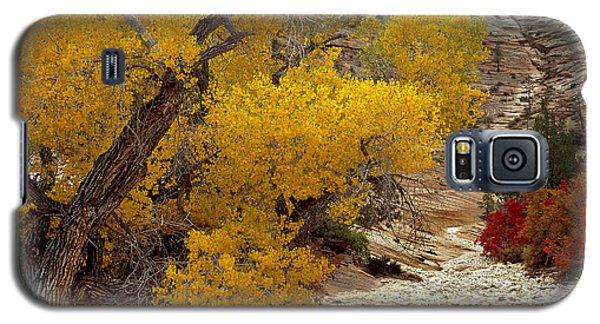Zion National Park Autumn Galaxy S5 Case