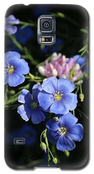 Zip A Dee Doo Dah Galaxy S5 Case by Elizabeth Sullivan