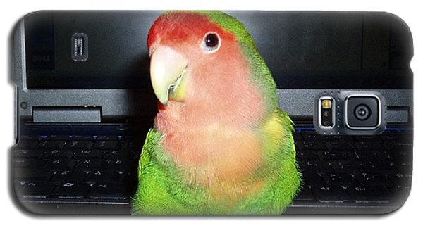 Galaxy S5 Case featuring the photograph Zippy The Lovebird by Joan Reese