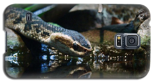 Galaxy S5 Case featuring the photograph Zoo 039 by Andy Lawless