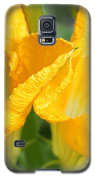 Zucchini Flowers In May Galaxy S5 Case