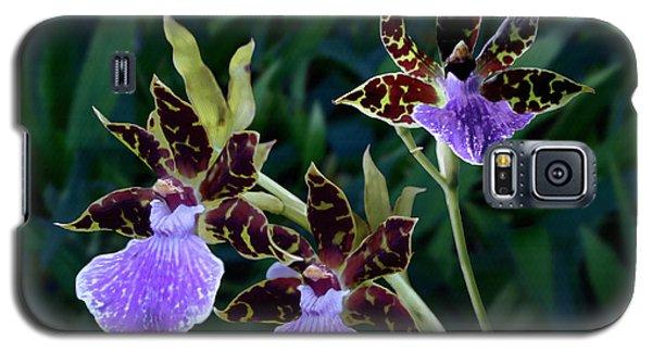 Zygopetalum Orchid Galaxy S5 Case