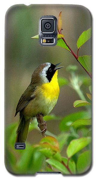 Galaxy S5 Case featuring the photograph  Common Yellowthroat Warbler Warbling Dsb006 by Gerry Gantt