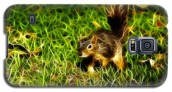 - Fractal - Pointer - Robbie The Squirrel Galaxy S5 Case