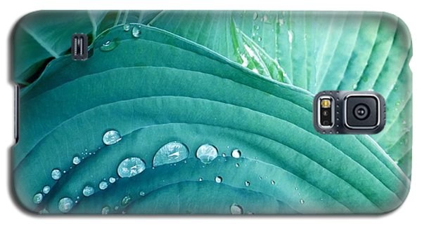 After The Rain Galaxy S5 Case by Carolyn Repka