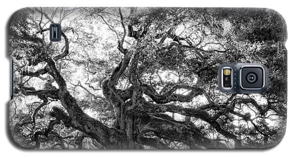 Galaxy S5 Case featuring the photograph Angel Oak by Lynne Jenkins
