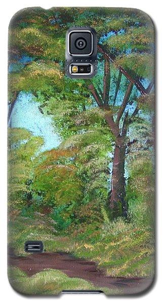 Autumn Evening Galaxy S5 Case