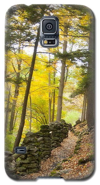 Autumn Hike Galaxy S5 Case by Cindy Haggerty