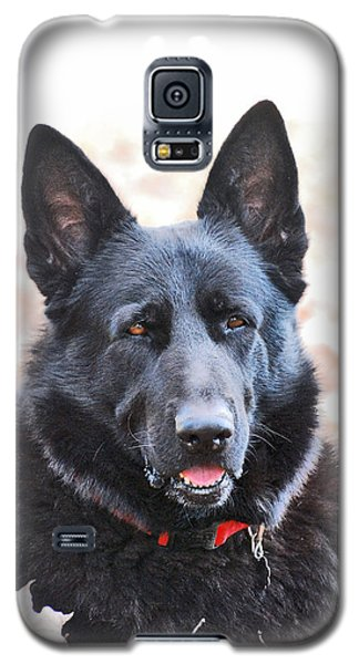 Galaxy S5 Case featuring the photograph Bear by Margaret Palmer