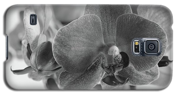 Black And White Orchid Galaxy S5 Case by Dariusz Gudowicz