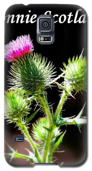 Bonnie Scotland Galaxy S5 Case