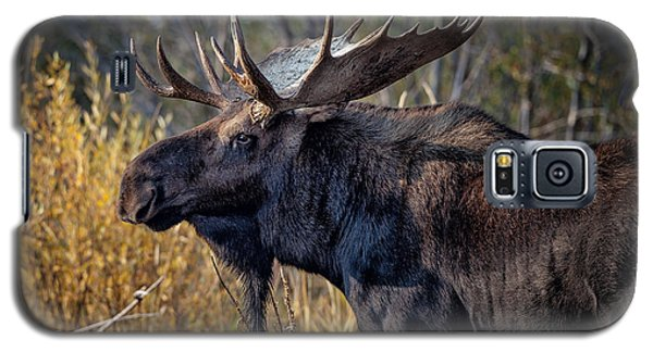 Bull Moose Galaxy S5 Case
