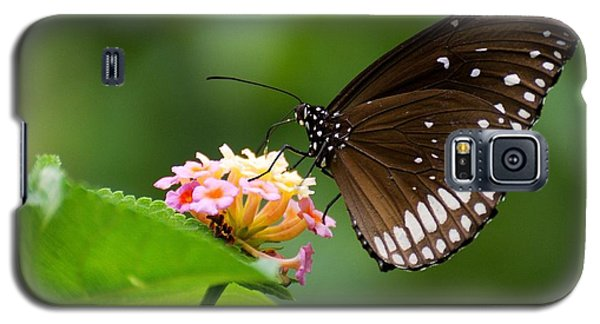 Galaxy S5 Case featuring the photograph Butterfly by Fotosas Photography
