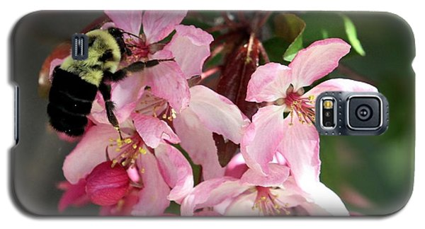 Galaxy S5 Case featuring the photograph Buzzing Beauty by Elizabeth Winter