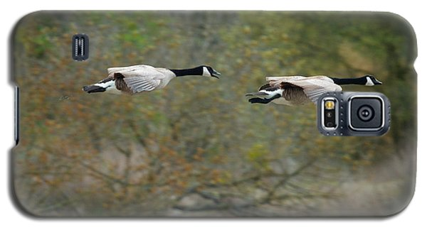Galaxy S5 Case featuring the photograph Canada Geese by Doug Herr