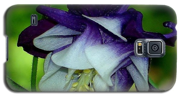 Galaxy S5 Case featuring the photograph Columbine Flower by Katy Mei