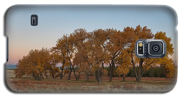 Galaxy S5 Case featuring the photograph Cottonwood Grove by Monte Stevens