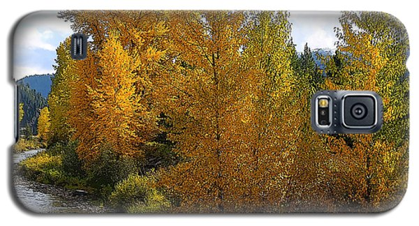 Fall Colors Galaxy S5 Case by Steve McKinzie