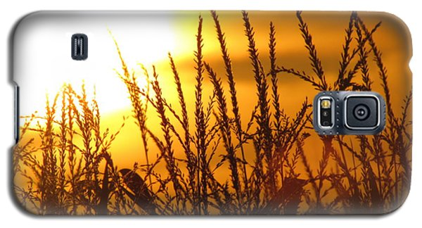 Farming Sunset Galaxy S5 Case by France Laliberte