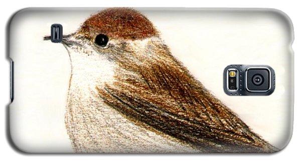 Galaxy S5 Case featuring the drawing Female Blackcap  by Barbara Moignard
