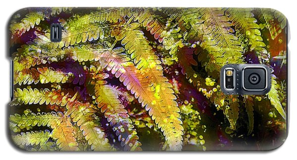 Galaxy S5 Case featuring the photograph Fern In Dappled Light by Judi Bagwell