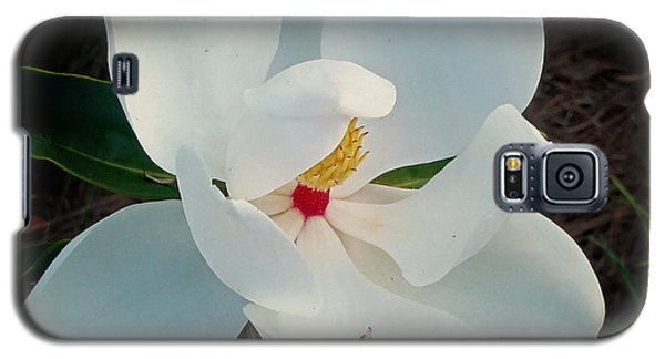 Galaxy S5 Case featuring the photograph White Florida Magnolia by Nava Thompson