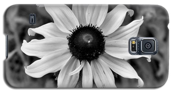 Galaxy S5 Case featuring the photograph Flower by Brian Hughes