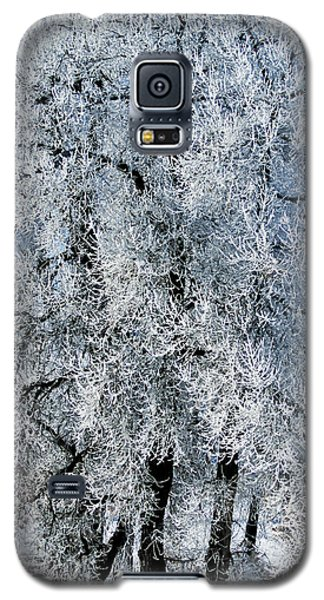 Iced Galaxy S5 Case