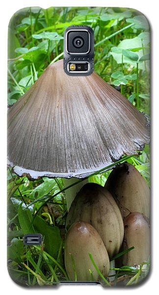 Inky Caps Galaxy S5 Case