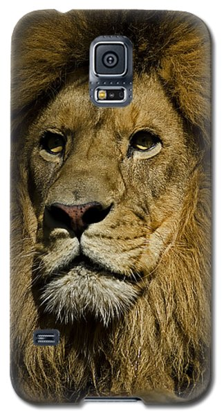 Lion Portrait Galaxy S5 Case
