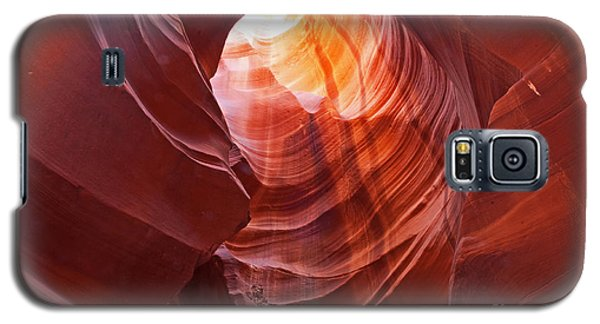 Galaxy S5 Case featuring the photograph Looking Up by Bob and Nancy Kendrick
