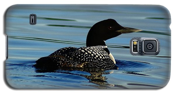 Galaxy S5 Case featuring the photograph Loon 2 by Steven Clipperton