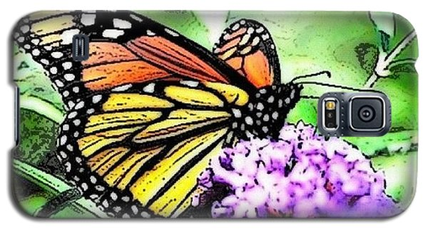 Orange Galaxy S5 Case - Monarch Butterfly by Edward Sobuta
