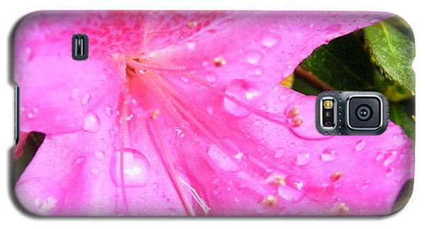 Galaxy S5 Case featuring the photograph Morning Dew by Brian Wright