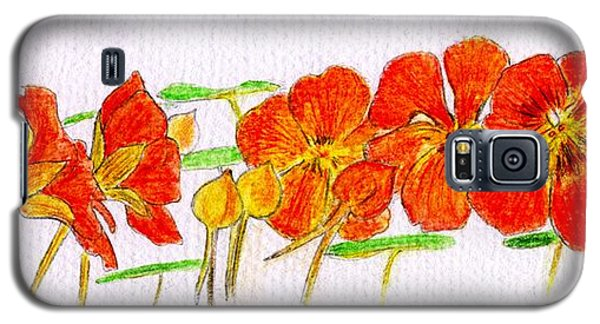 Galaxy S5 Case featuring the drawing Nasturtiums by Barbara Moignard