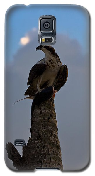 Osprey With Catch Galaxy S5 Case