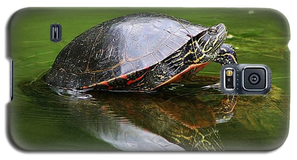 Galaxy S5 Case featuring the photograph Peaceful Reflections by Bruce Bley