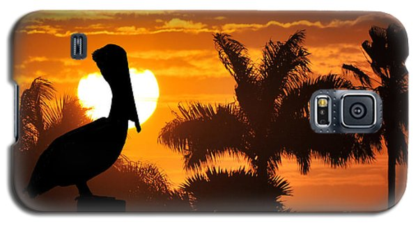 Galaxy S5 Case featuring the photograph Pelican At Sunset by Dan Friend