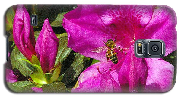 Galaxy S5 Case featuring the photograph Pollinating  by Brian Wright