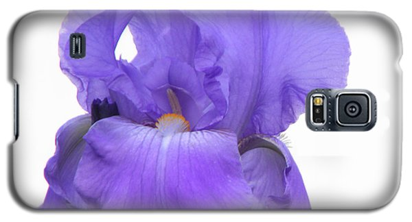 Purple Iris On White Galaxy S5 Case