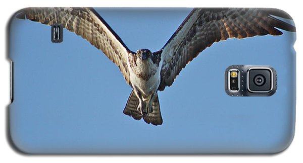 Galaxy S5 Case featuring the photograph Remember To Soar by Cathie Douglas