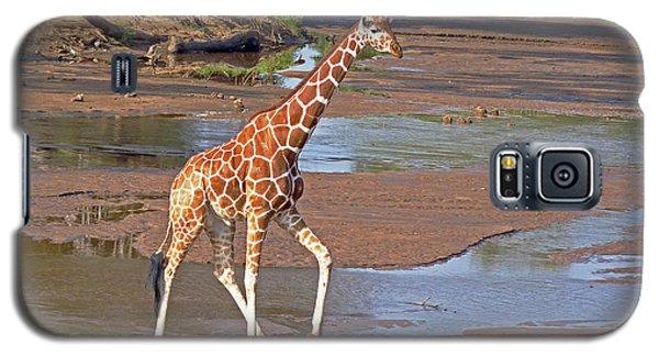 Reticulated Giraffe Galaxy S5 Case