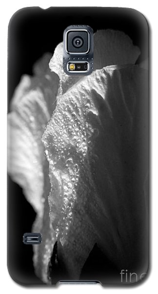 Rose Of Sharon Galaxy S5 Case by Jeannette Hunt