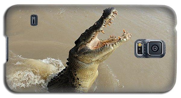 Salt Water Crocodile 2 Galaxy S5 Case by Bob Christopher