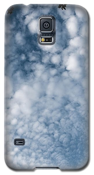 Galaxy S5 Case featuring the photograph Sky Fluff by Lenny Carter