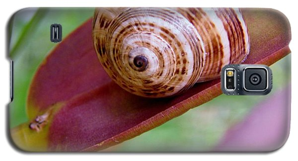 Galaxy S5 Case featuring the photograph Snail On Leaf by Werner Lehmann
