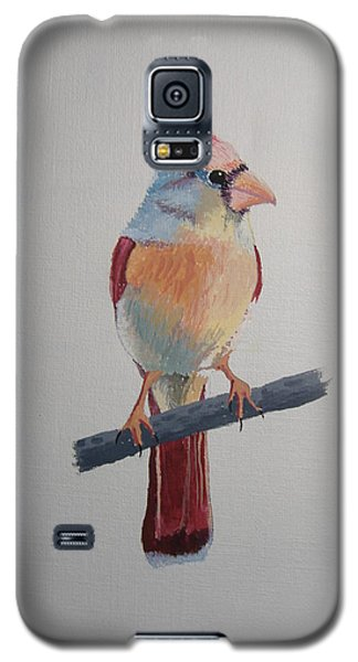 Spring Cardinal Galaxy S5 Case by Norm Starks